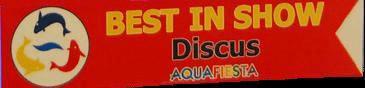 Best in show aquafiesta 2009