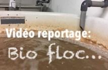 Image a la une Bio floc experimental