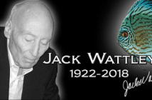 In memory of Jack Wattley