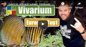 Image a la une video reportage Vivarium Rosmalen