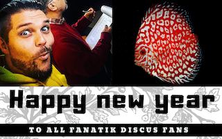 Happy new year image a la une