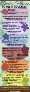 Edible Flowers for Cocktails Infographic