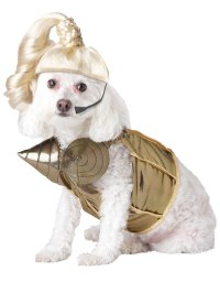 Madonna Dog Costume - PET20110 - Fancy Dress Ball