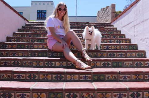 on stairs with dog