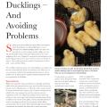 Fancy fowl poultry waterfowl amp turkey magazine may 2013