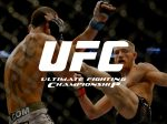 Ultimate Fighting Championship (UFC) EA Sports | MMA Fight Games | Fact | About | History