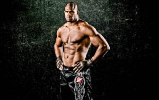 Alistair Cees Overeem Fighting Style