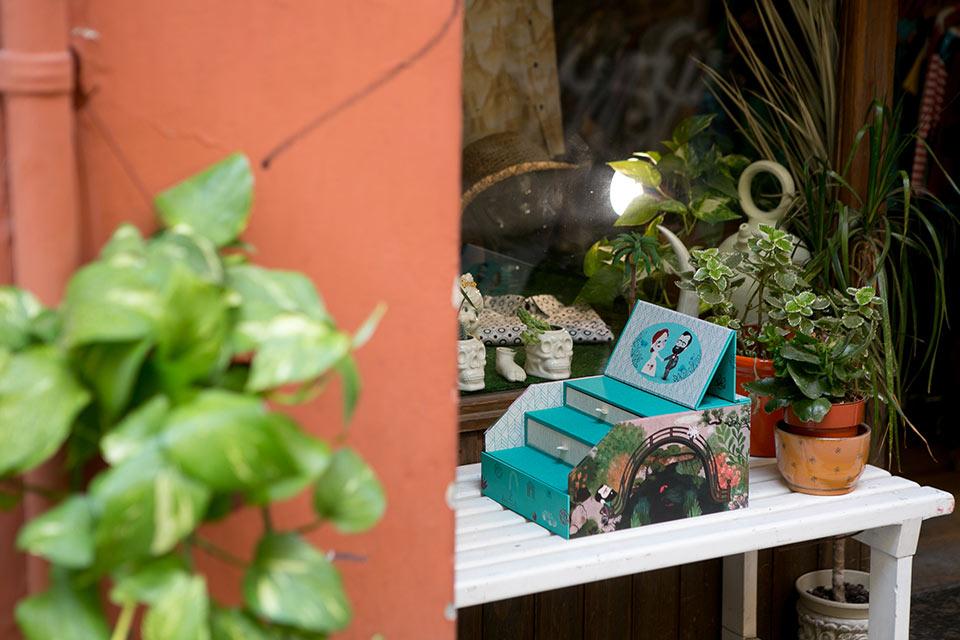 caja-de-fotos-ilustrada-con-jarin