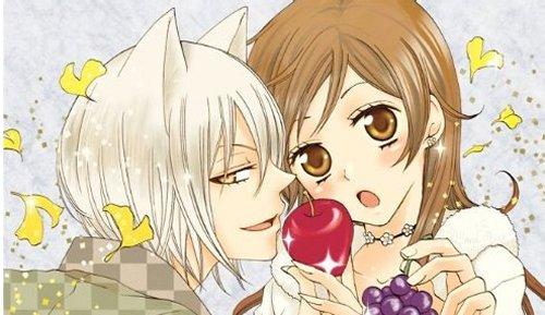 Image result for kamisama kiss manga volume 1