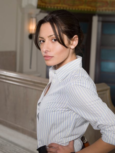 Sarah Shahi as Dani Reese