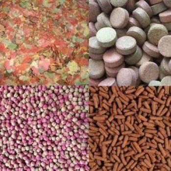 Alimentos más comunes empleados en la alimentación de peces. (De izquierda a derecha y de arriba abajo): Escamas, pastillas, granulado y sticks.
