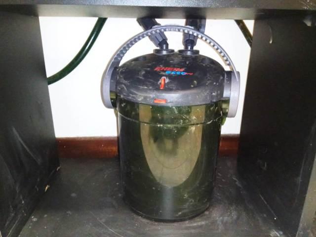 filtro de acuario ruidoso eheim