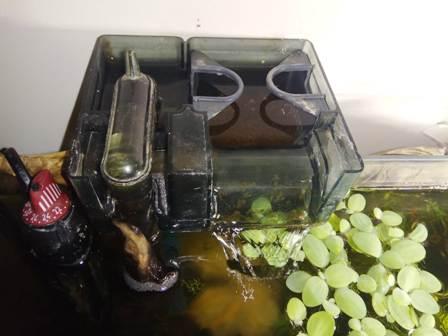 filtro de acuario ruidoso exterior
