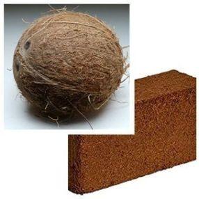 Fibra de coco con bloque de sustrato coco