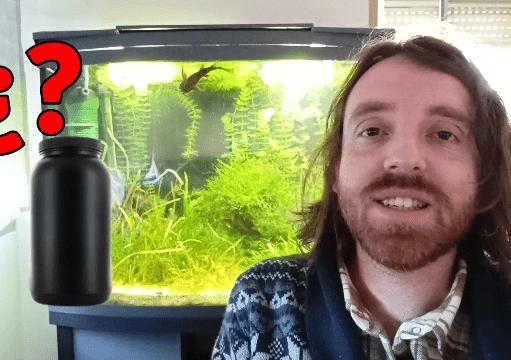 Mejor medicamento para peces antipunto blanco