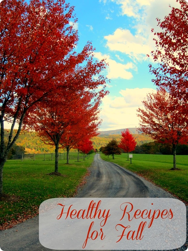 of my very favorite healthy recipes for fall i hope you enjoy them