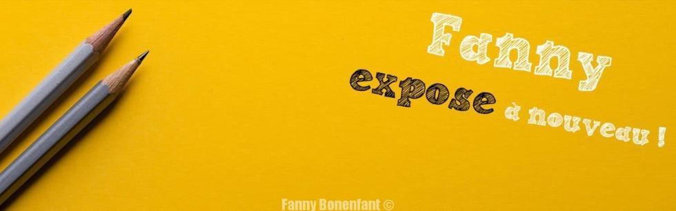Liste des expositions 2017 de Fanny Bonenfant illustrations