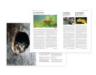 Livre rouge des espèces menacées en Alsace Odonat