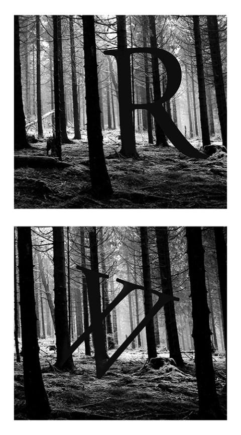 Lettres forêt