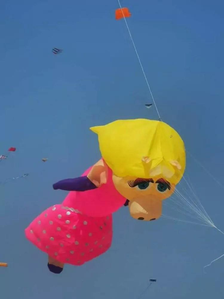 Miss Piggy Drache