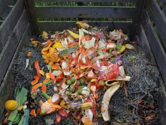 Preparar abono orgánico aprovechando la yerba mate
