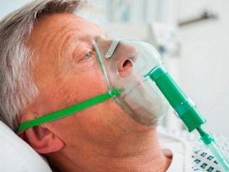 La yerba podría curar la gripe A