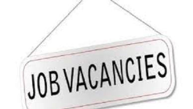 Thinkshifts Limited Job Recruitment Portal | www.thinkshifts.com