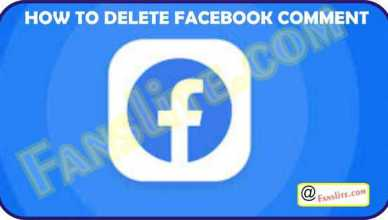Deleting Facebook Comment - How to Delete Facebook Comment – Delete Facebook Comment