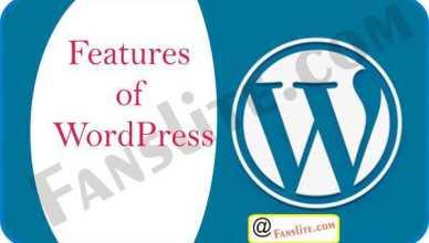 WordPress Review – Features of WordPress | How to use WordPress - WordPress Updates
