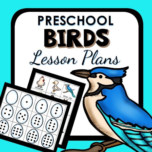 Bird Activities for Kids  Fantastic Fun  Learning