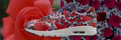 Nike Air Max 1 Ultra City Collection