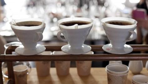 Cata de café Piazza D'Oro @ Mesón Plateselector