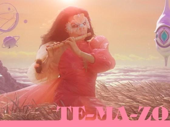"""The Gate"" de Björk"