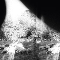 godspeed-you-black-emperor
