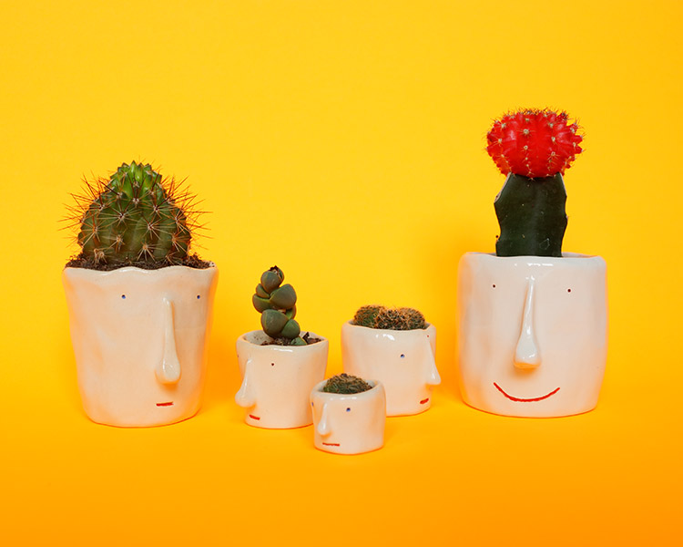 pompilo-plants