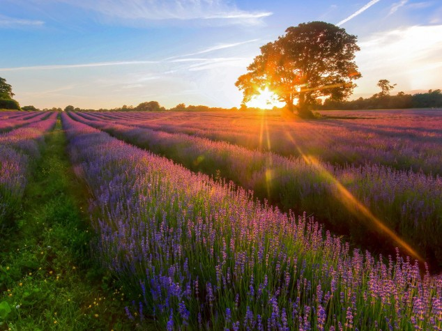 25 Beautiful Nature Wallpapers and Wonderful Places Around