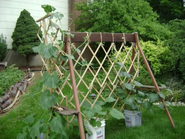 13 Exceptional DIY Trellis Ideas For You Garden