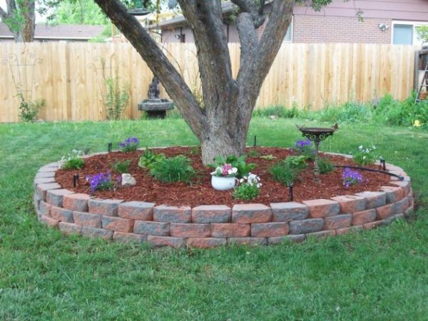 diy favorite backyard garden