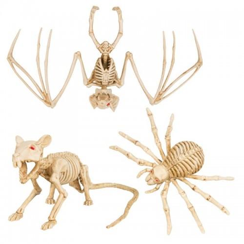 Scheletri Animali Halloween