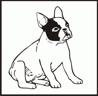 Available Dog Designs (Cairn Terrier to Keeshond) to
