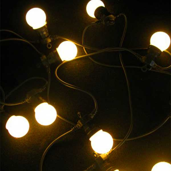 20 LED Festoon Lights
