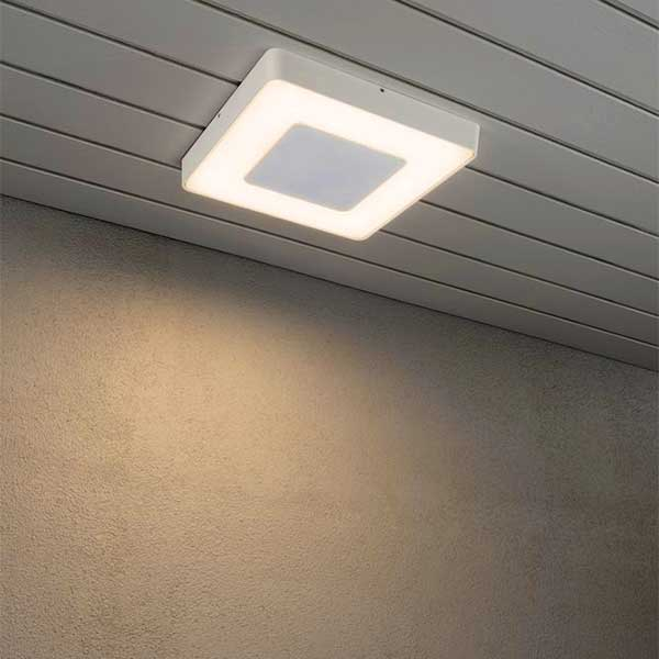 Colour Temp Ceiling Light
