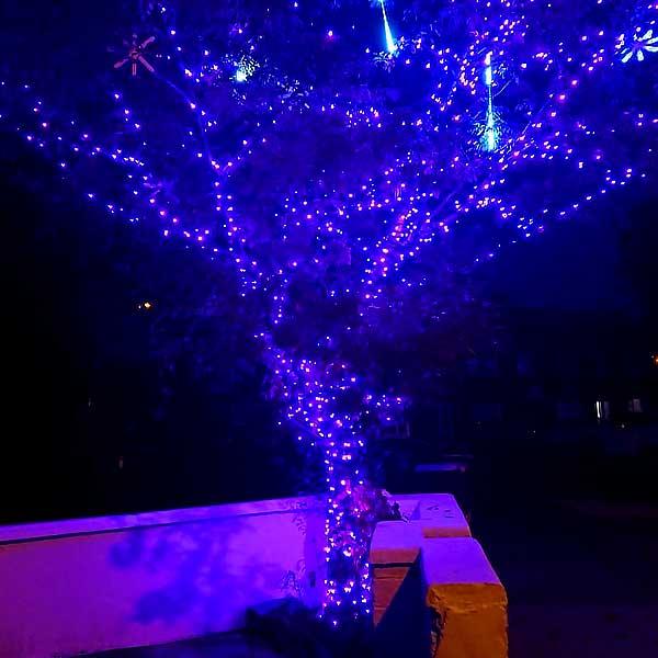 Christmas LED Tree Lights Pink