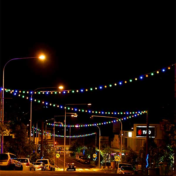 Festoon Lighting 4Mtrs