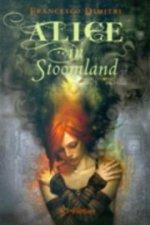 Alice in Stoomland Boek omslag