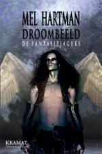Fantasiejagers 4: Droombeeld Boek omslag