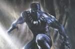Wie is de Black Panther? Boek omslag