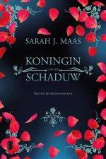 Koningin van de schaduw Boek omslag