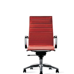 Ergonomic Chair Auckland Deer Antler High Back Office Fanuli Furniture