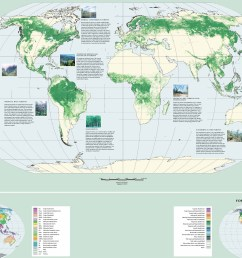 global forest resources assessment 2000 460 kb  [ 2956 x 1744 Pixel ]